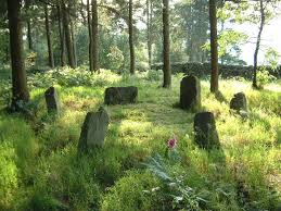 stone circle woods